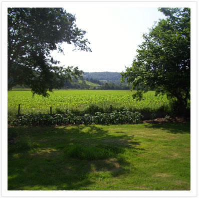 Enjoy the magnificent Clwydian Range scenery from the Mountain View B & B